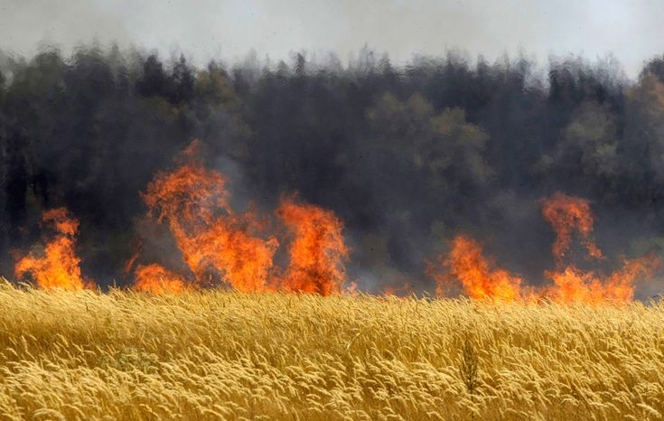 agricultural field fire